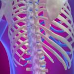 Определяем симптомы ушибленного ребра и лечим его