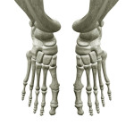 Симптоматика и лечение плюсневой кости