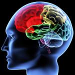 Что делать если отекает мозг?